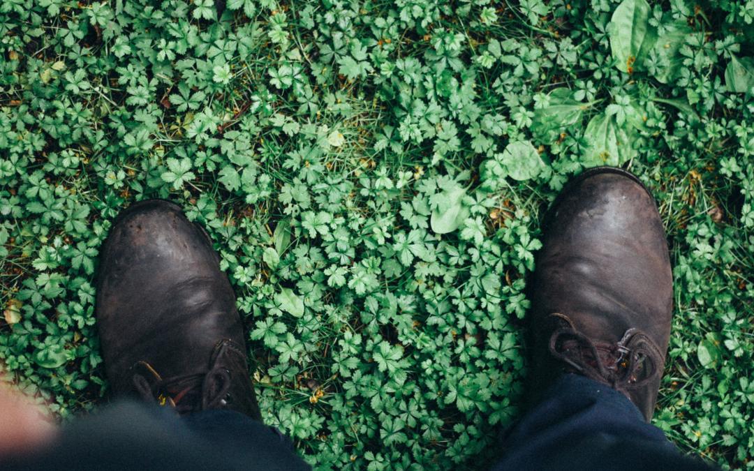 Comment rendre son entreprise plus verte ?